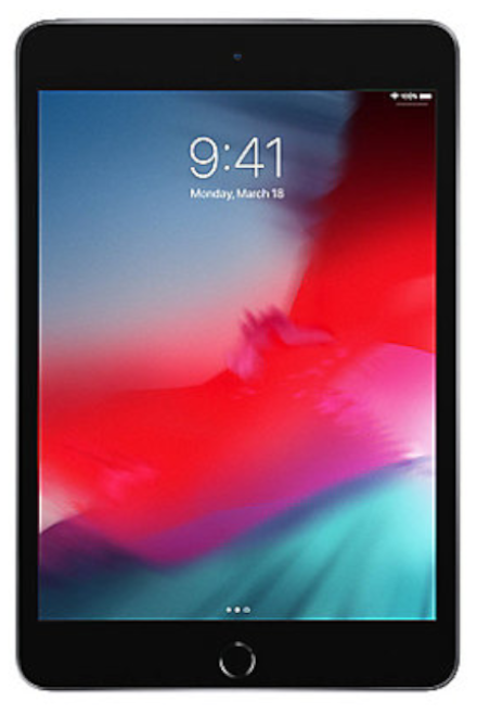 Apple - iPad mini 5 256GB WiFi + 4G