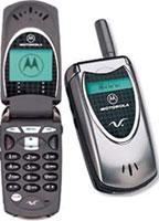 Motorola - V60